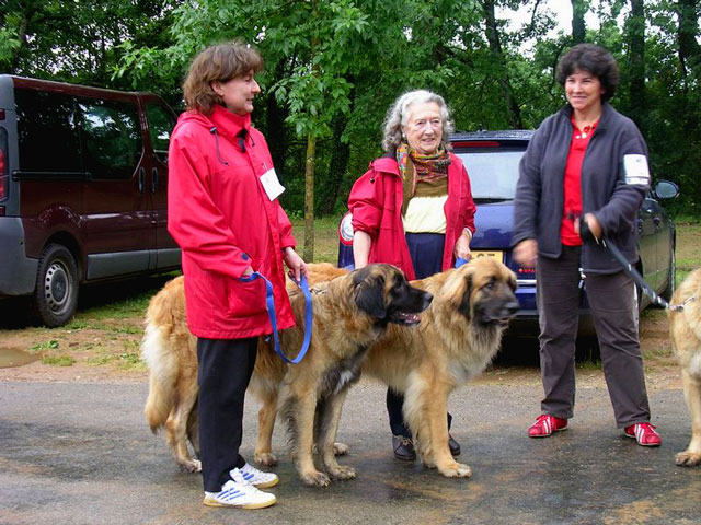 Exposition régionale d'élevage - Bannac 2008 Bannac75