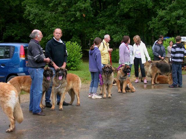 Exposition régionale d'élevage - Bannac 2008 Bannac76