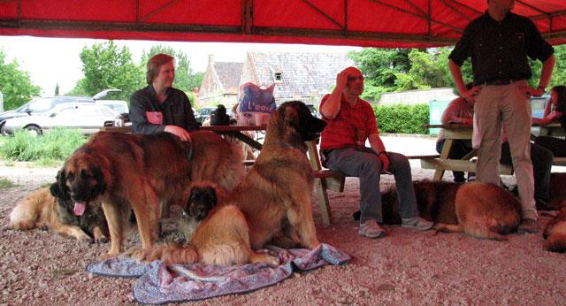 Exposition Régionale de Volckerinckhove 2008 Ensemb17