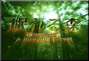 A Sleeping Forest [Bouh Bouh Fansub en co-prod avec FullDramaStyle] Nmori110