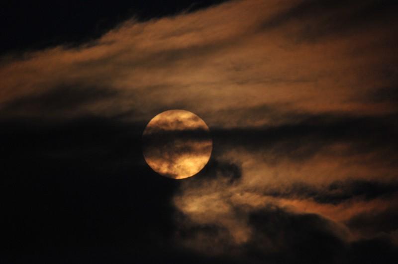 éclipse lunaire du 10 décembre 2011 Aclips10