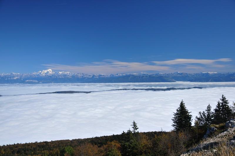 mer de nuage sur coucher de soleil Alpes10