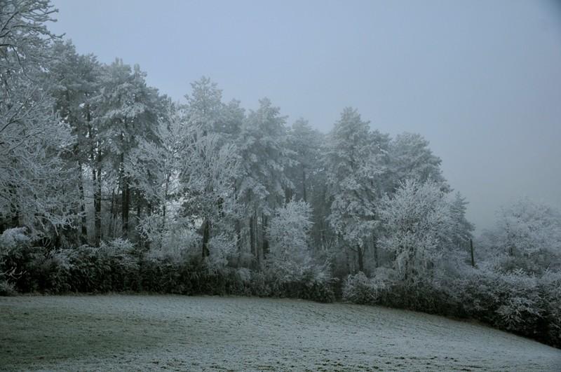 hiver 2011 / 2012 Gelaes10