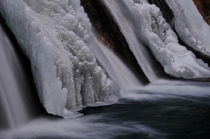hiver 2011 / 2012 Nik_8312