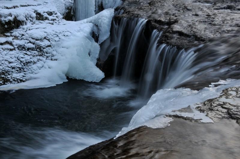 hiver 2011 / 2012 Nik_8411