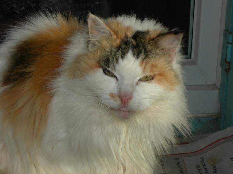 Clarisse, 16 ans Claris11