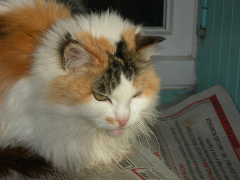 Clarisse, 16 ans Claris12
