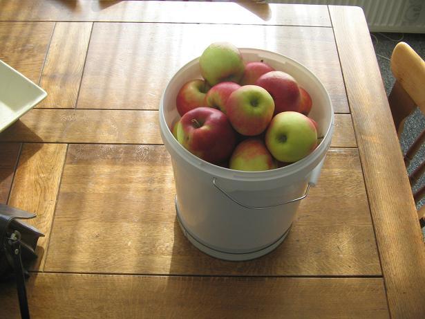 Un seau de pommes Mestir42