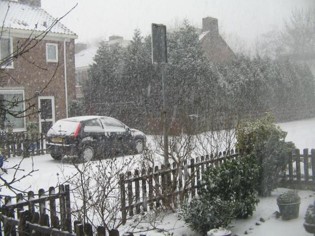Il neige aux Pays-Bas Mestir80