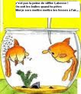 Blagounettes sur Laboss Poisso11