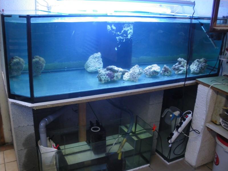 Evolution du nouveau bac du locarium (900 litres) 07sept10
