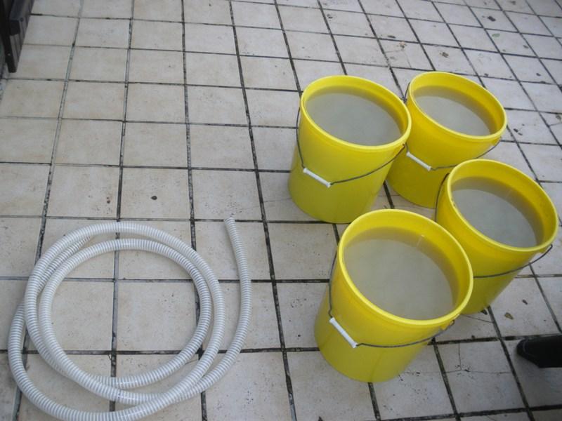 Elagage dans le 1500 litres Imgp0727