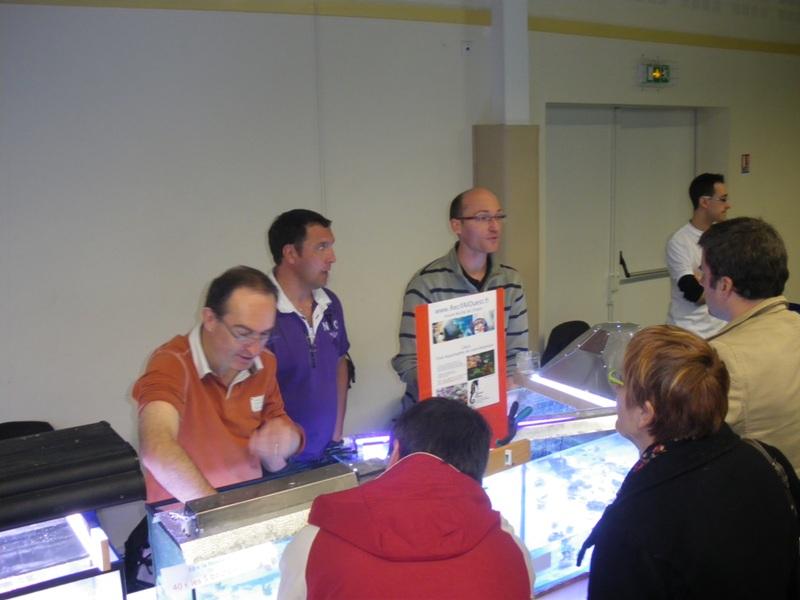Photos bourse Sallertaine (section eau de mer) Imgp9413