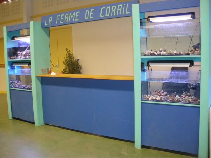 Bourse de Salertaine (11 mars 2012) Imgp9420