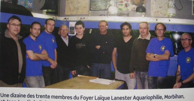 Club de Lanester dans L'aquarium à la maison. Imgp9620