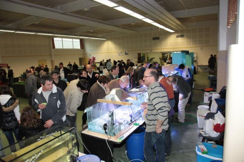 Bourse de Salertaine (11 mars 2012) Saller14
