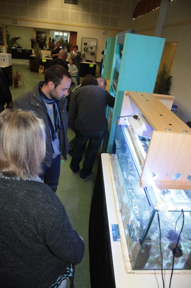 Bourse de Salertaine (11 mars 2012) Saller15