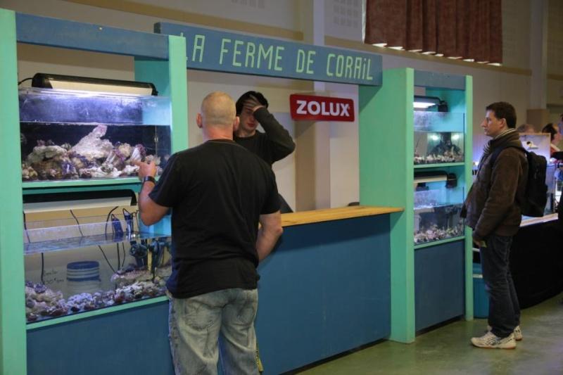 Bourse de Salertaine (11 mars 2012) Saller20