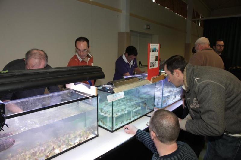 Bourse de Salertaine (11 mars 2012) Saller26