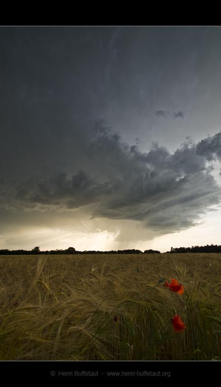 Trois jours d'orage Dsc_2724