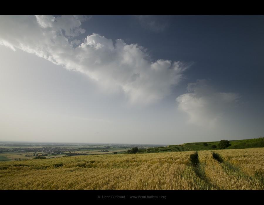 Trois jours d'orage Dsc_3212