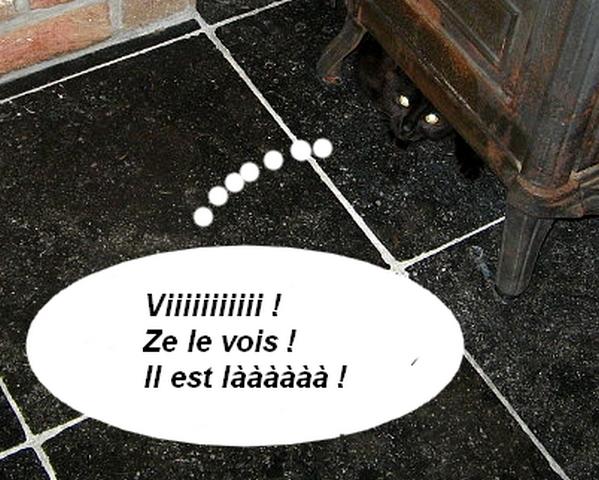 Le petit Charbon Charbo20