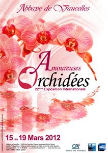 Exposition Internationale d'Orchidées à l'abbaye de Vaucelle Vaucel10