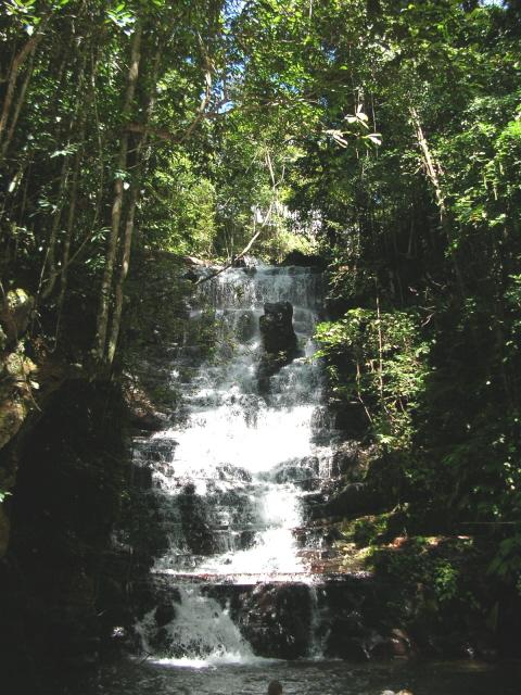 Sur la route des tépuys (Venezuela) Dscn3914
