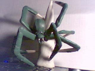 [WHB/O&G] Création d'une mère des araignées Pictur10