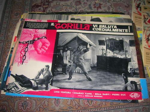 Le Gorille vous salue bien Ce5vmb10