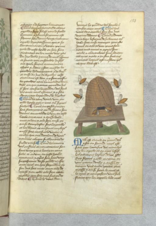 Iconos XVème siècle: vannerie, paniers,..... Ruche10