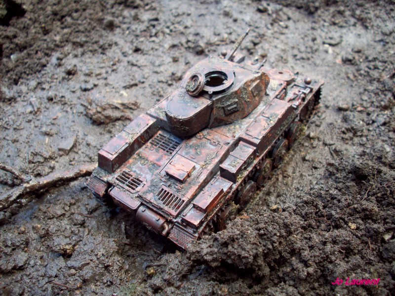 Panzerkampfwagen II 101_2612