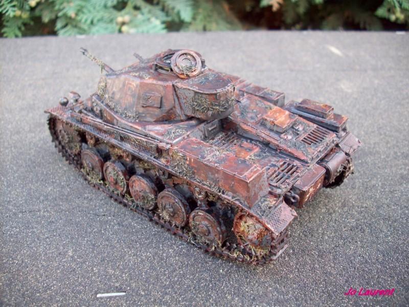 Panzerkampfwagen II 101_2615