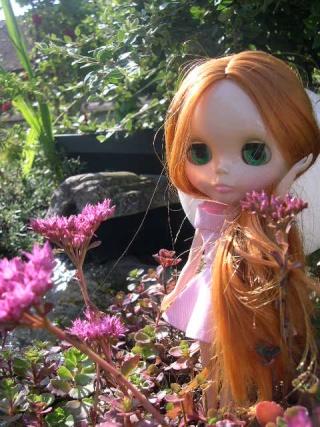 My dolls...!! PWP power p25 Dscn3314