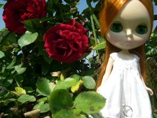 My dolls...!! PWP power p25 Dscn3315