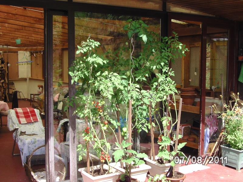 La nature autour de chez vous Jardin10
