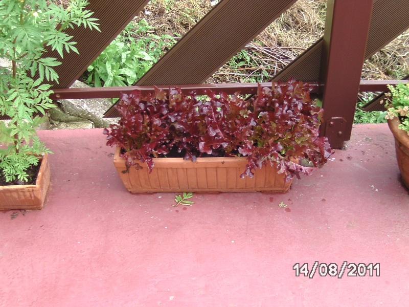 La nature autour de chez vous Jardin21