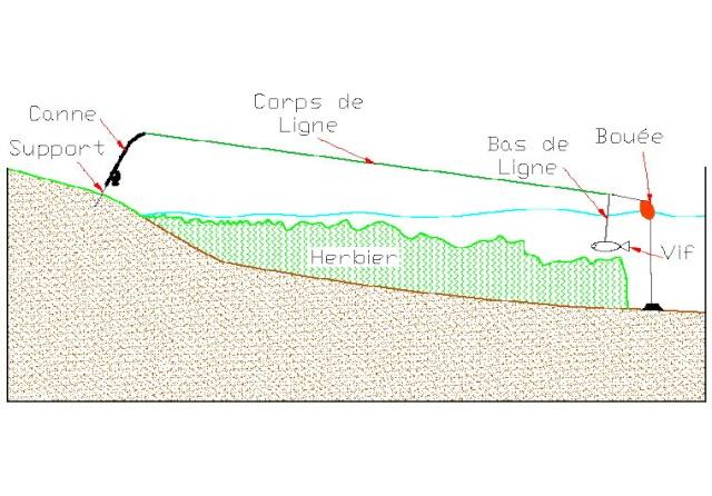 Tag pechedusilure sur CARNALOR La Pêche des Carnassiers Bouee_11