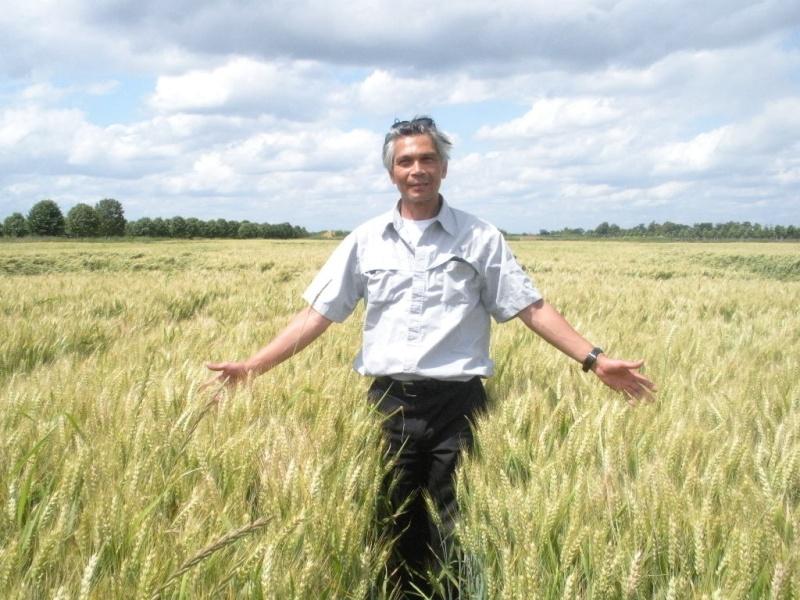 Rituels du blé et utilisation du blé en ésotérisme Cercle15