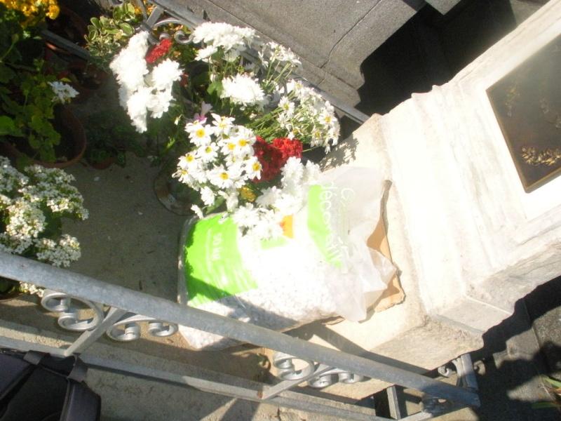 Vandalisme sur la tombe de Gabriel DELANNE Gabrie12