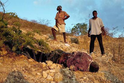 HAITI NOTRE PAYS   QUEL AVENIR ? Feb_1111