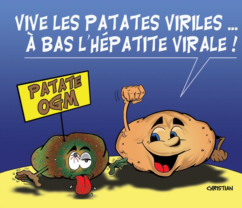 Je parle de mon jardin Patate10