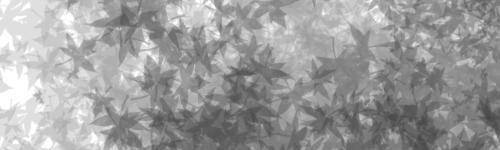 TUTO : [The Gimp 2.0] Signature Feuillue Part-010