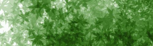 TUTO : [The Gimp 2.0] Signature Feuillue Part-011