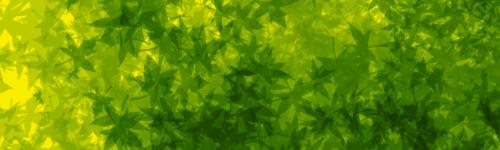 TUTO : [The Gimp 2.0] Signature Feuillue Part-013