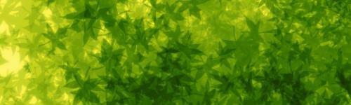TUTO : [The Gimp 2.0] Signature Feuillue Part-014