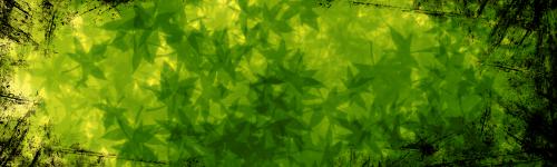 TUTO : [The Gimp 2.0] Signature Feuillue Part-019
