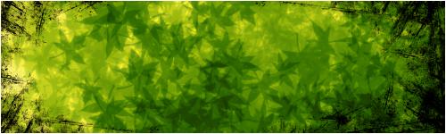 TUTO : [The Gimp 2.0] Signature Feuillue Part-022