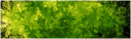 TUTO : [The Gimp 2.0] Signature Feuillue Part-023