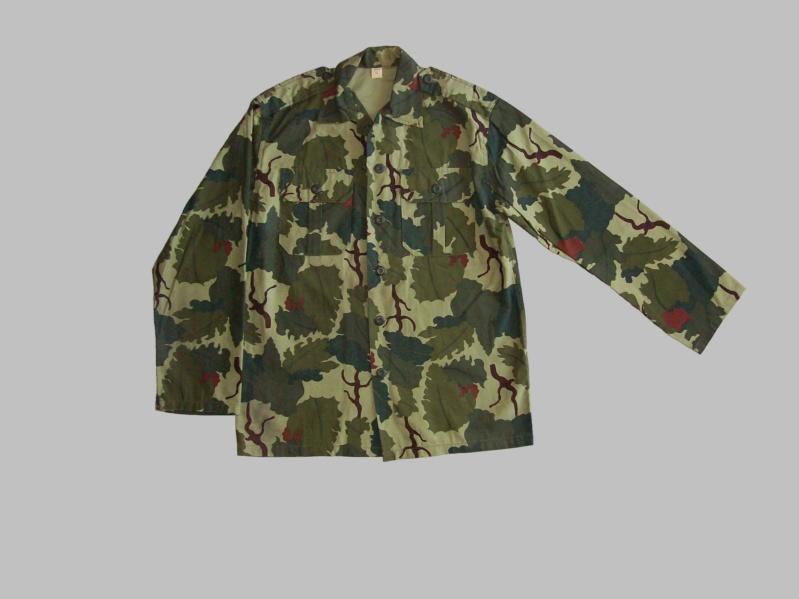 Uruguayan camouflage 100_5513